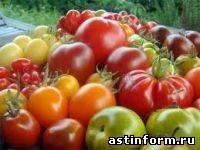 Штаб «Урожай – 2003» сообщает